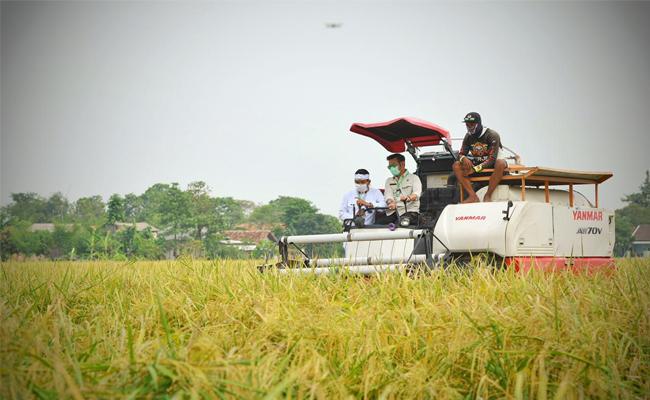 Kementan Apresiasi Upaya Kabupaten Bekasi Jaga Lahan Pertanian Lewat Perda