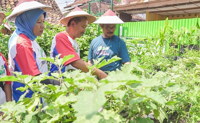 Di Kampung Sayur, Mentan Bicara Semangat Pertanian dan Program KUR