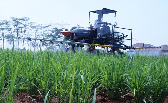 Dorong Generasi Milenial Sukai Sektor Pertanian