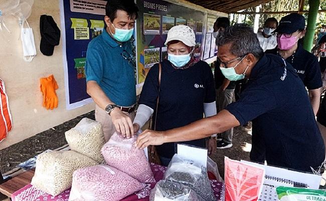 Tinjau Pabrik Milik ANJ, Tiga Kementerian Dukung Pengembangan Edamame di Jember
