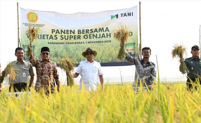 Akselerasi Kedaulatan Pangan, Mentan Syahrul Lawan Alih Fungsi Lahan
