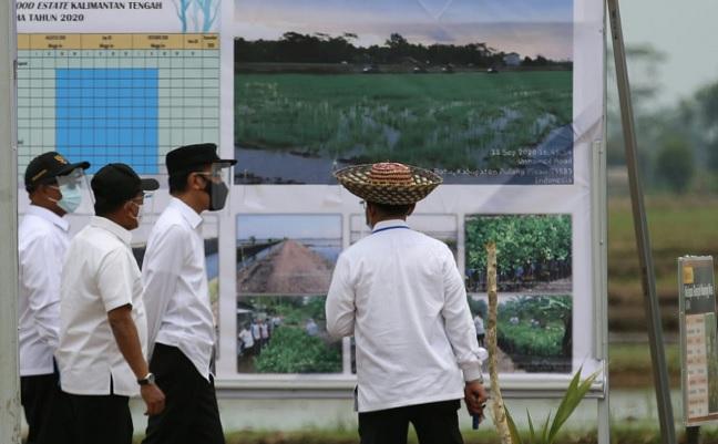 KTNA dan PERAGI Dukung Program Food Estate, Untuk Ketahanan Pangan Nasional